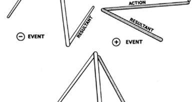 triangulated universe